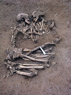 Neolithic Lovers
