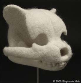 teddy bear skull by Stephanie Metz