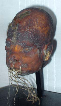Actual Shrunken Head on display at the Lightner Museum, St. Augustine