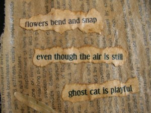 ghostCat_haikuSM