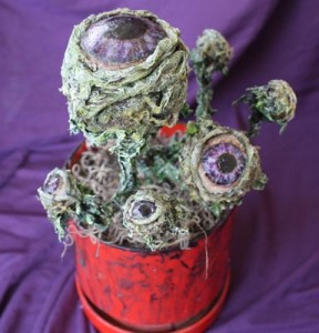 Eyeball Plant or Peek-a_Boo Plant by Ghoul Friday